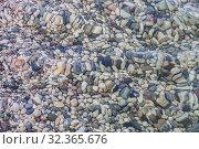 Купить «Pebble on the sea coast», фото № 32365676, снято 1 августа 2015 г. (c) Юрий Бизгаймер / Фотобанк Лори
