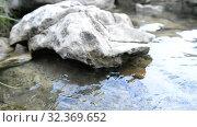 Купить «Water, rocky shore of the lake, calm wave, landscape», видеоролик № 32369652, снято 2 ноября 2019 г. (c) Mikhail Erguine / Фотобанк Лори