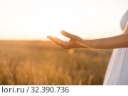 hand of young woman on cereal field. Стоковое фото, фотограф Syda Productions / Фотобанк Лори