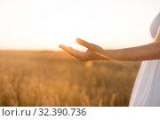 Купить «hand of young woman on cereal field», фото № 32390736, снято 26 июля 2019 г. (c) Syda Productions / Фотобанк Лори