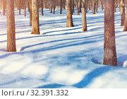 Купить «Зимний пейзаж. Зимний лес. Winter sunset landscape with forest trees and white snowdrifts on the foreground. Colorful winter forest», фото № 32391332, снято 6 марта 2019 г. (c) Зезелина Марина / Фотобанк Лори