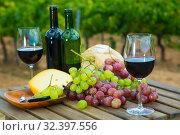 Купить «Red wine with cheese, bread and grapes», фото № 32397556, снято 21 февраля 2020 г. (c) Яков Филимонов / Фотобанк Лори