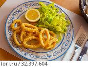 Купить «Crispy squid rings in batter Roman style. Traditional spanish dish», фото № 32397604, снято 22 февраля 2020 г. (c) Яков Филимонов / Фотобанк Лори
