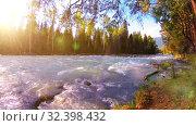 Купить «Meadow at mountain river bank. Landscape with green grass, pine trees and sun rays. Movement on motorised slider dolly.», видеоролик № 32398432, снято 23 февраля 2019 г. (c) Александр Маркин / Фотобанк Лори