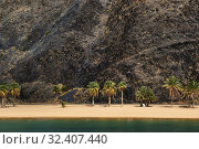 Rocky volcanic mountain and coastline of palm lined trees on the sandy beach of picturesque Playa de Las Teresitas, green turquoise calm waters of the Atlantic Ocean, Canary Islands, Tenerife, Spain (2019 год). Стоковое фото, фотограф Alexander Tihonovs / Фотобанк Лори