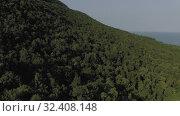 Купить «Phu Quoc Island forest 4K Drone shot», видеоролик № 32408148, снято 5 ноября 2019 г. (c) Aleksejs Bergmanis / Фотобанк Лори
