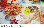 View of large assortment of fresh seafoods on icy showcase of fish store. Стоковое видео, видеограф Яков Филимонов / Фотобанк Лори