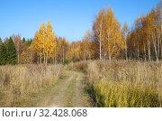 Купить «Подмосковный осенний пейзаж», фото № 32428068, снято 18 октября 2018 г. (c) Елена Коромыслова / Фотобанк Лори