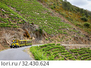 Купить «Aba Sacra Tourist Train, Ribeira Sacra, Heroic Viticulture, Sil river canyon, Doade, Sober, Lugo, Galicia, Spain», фото № 32430624, снято 23 мая 2019 г. (c) age Fotostock / Фотобанк Лори