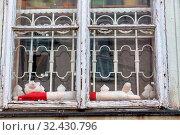 Altes Holzfenster, Symbol für Altbau, Sanierungsbedarf, Verfall. Стоковое фото, фотограф Zoonar.com/Erwin Wodicka / age Fotostock / Фотобанк Лори