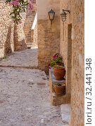 Купить «View of street fortified town Monemvasia (Laconia, Greece, Peloponnese)», фото № 32441348, снято 15 июня 2019 г. (c) Татьяна Ляпи / Фотобанк Лори
