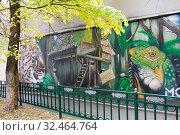 Купить «Граффити-картина с животными во дворе московского дома на Пятницкой улице», эксклюзивное фото № 32464764, снято 14 октября 2014 г. (c) Солодовникова Елена / Фотобанк Лори
