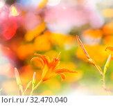 Купить «Close-up shot of the beautiful flowers. Suitable for floral background.», фото № 32470040, снято 21 января 2020 г. (c) easy Fotostock / Фотобанк Лори