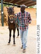 Купить «Male african american farmer standing with horse at stable outdoor», фото № 32473208, снято 6 августа 2019 г. (c) Яков Филимонов / Фотобанк Лори