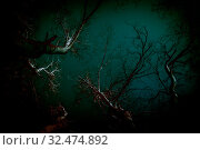 Abstract background in horror style. Bloody surrealistic scary black creepy mystical curved silhouettes of tree branches in the forest lit by a ghostly moon mysterious light, gloomy dark night sky. Стоковое фото, фотограф Светлана Евграфова / Фотобанк Лори