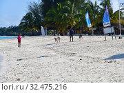 Купить «Zanzibar, Tanzania, Africa. Kendwa beach», фото № 32475216, снято 6 октября 2019 г. (c) Знаменский Олег / Фотобанк Лори