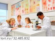 Kinder der Biologie Klasse arbeiten mit Tieren und einem Mikroskop im Labor. Стоковое фото, фотограф Zoonar.com/Robert Kneschke / age Fotostock / Фотобанк Лори