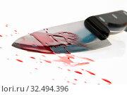 Ein Messer mit Blut verschmiert. Tatwaffe eines Mordes. Symbolfoto Kriminalität. Стоковое фото, фотограф Zoonar.com/Erwin Wodicka / age Fotostock / Фотобанк Лори