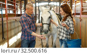 Couple with bucket before horse standing at stabling indoor. Стоковое фото, фотограф Яков Филимонов / Фотобанк Лори