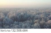 Купить «Aerial video view from drone of a Sunrise over snowy winter forest landscape. Birch forest under hoarfrost in winter season.», видеоролик № 32508684, снято 7 ноября 2019 г. (c) Serg Zastavkin / Фотобанк Лори