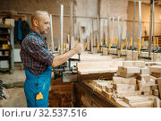 Carpenter clamps the board in a vise, woodworking. Стоковое фото, фотограф Tryapitsyn Sergiy / Фотобанк Лори