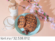 Healthy vegetarian cereal oats food, sweet dessert, snacks, culinary products. Oatmeal cookies, with chocolate, with milk for breakfast on a blue turquoise plate on a background of peach pastel color. Стоковое фото, фотограф Светлана Евграфова / Фотобанк Лори