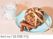 Healthy vegetarian cereal oats food, sweet dessert, snacks, culinary products. Oatmeal cookies with chocolate, cinnamon, milk. Breakfast on a blue turquoise plate on a background of peach pastel color. Стоковое фото, фотограф Светлана Евграфова / Фотобанк Лори
