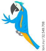 Cartoon Illustration of Macaw Bird Funny Animal Character. Стоковое фото, фотограф Zoonar.com/Igor Zakowski / easy Fotostock / Фотобанк Лори
