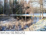 Купить «Nature landscape with pond and trees after first frost, morning with frozen water and plants», фото № 32563212, снято 30 октября 2019 г. (c) Кекяляйнен Андрей / Фотобанк Лори