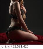 Купить «Sexy blonde posing in beautiful lace lingerie», фото № 32581420, снято 5 июля 2016 г. (c) Гурьянов Андрей / Фотобанк Лори