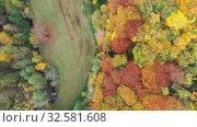 Купить «Aerial view of autumn forest. Colorful trees aerial view», видеоролик № 32581608, снято 18 октября 2019 г. (c) Яков Филимонов / Фотобанк Лори