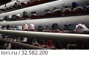 Купить «Different colorful sport shoes are on the shelves», видеоролик № 32582200, снято 7 октября 2019 г. (c) Яков Филимонов / Фотобанк Лори