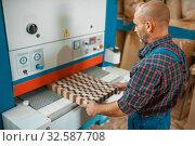 Carpenter works on woodworking machine, factory. Стоковое фото, фотограф Tryapitsyn Sergiy / Фотобанк Лори
