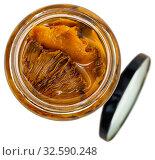 Купить «Marinated mushrooms lactarius deliciosus», фото № 32590248, снято 11 декабря 2019 г. (c) Яков Филимонов / Фотобанк Лори