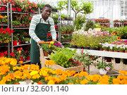 Купить «Flower vendor carrying cart with plants in pots», фото № 32601140, снято 22 мая 2019 г. (c) Яков Филимонов / Фотобанк Лори