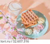 Купить «Sweet delicious dessert, homemade baked goods for breakfast. Belgian soft waffles on a blue plate with fresh milk and meringues on a peach-colored background in pastel tone», фото № 32607316, снято 30 ноября 2019 г. (c) Светлана Евграфова / Фотобанк Лори
