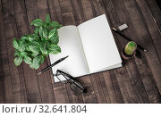 Купить «Blank open booklet, stationery and plants on vintage wood background. Responsive design template.», фото № 32641804, снято 28 мая 2020 г. (c) easy Fotostock / Фотобанк Лори