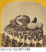 Купить «Autumn Treasures., Edward and Henry T. Anthony & Co. (American, 1862 - 1902), about 1864–1868, Albumen silver print», фото № 32687348, снято 17 июня 2019 г. (c) age Fotostock / Фотобанк Лори