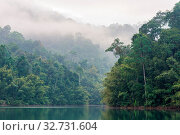 Купить «The national park Khao Sok with the Cheow Lan Lake is the largest area of virgin forest in the south of Thailand. Limestone rocks, jungle and karst formations determine the picture of the Park», фото № 32731604, снято 7 июня 2020 г. (c) easy Fotostock / Фотобанк Лори