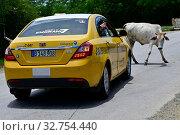 Купить «Cuba - Drive from Camaguey to Santiago de Cuba», фото № 32754440, снято 30 июля 2019 г. (c) Caro Photoagency / Фотобанк Лори