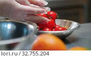 Купить «Kitchen - chef putting clean cherry tomatoes in the plate», видеоролик № 32755204, снято 5 июля 2020 г. (c) Константин Шишкин / Фотобанк Лори