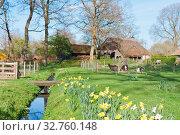 Купить «Dutch rural scene with farmhouse and goats», фото № 32760148, снято 7 июня 2020 г. (c) easy Fotostock / Фотобанк Лори