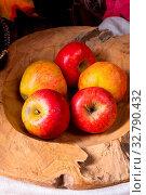 Купить «Malus sylvestris, the tasty European crab apple,», фото № 32790432, снято 19 февраля 2020 г. (c) easy Fotostock / Фотобанк Лори