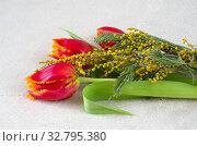 Букет из красных тюльпанов и мимозы. Стоковое фото, фотограф Елена Коромыслова / Фотобанк Лори
