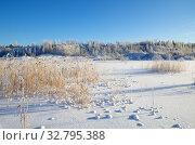 Купить «Зимний сельский пейзаж с видом на замерзший водоем покрытый снегом», фото № 32795388, снято 29 декабря 2014 г. (c) Елена Коромыслова / Фотобанк Лори