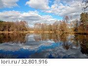 Купить «Teich, see, weiher, gewässer, wasser, wald, waldsee, spiegelung, himmel, wolke, wolken, wolkenhimmel, natur, münster, hessen,», фото № 32801916, снято 2 июня 2020 г. (c) easy Fotostock / Фотобанк Лори