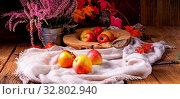 Купить «Malus sylvestris, the tasty European crab apple,», фото № 32802940, снято 19 февраля 2020 г. (c) easy Fotostock / Фотобанк Лори