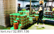 Confident African-American man engaged in producing of pickled olives with young female assistant, stacking plastic packing buckets with finished products. Стоковое видео, видеограф Яков Филимонов / Фотобанк Лори