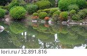 Купить «The traditional Japanese garden in the inner bailey of Osaka Castle. Japan», видеоролик № 32891816, снято 30 декабря 2019 г. (c) Serg Zastavkin / Фотобанк Лори