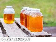Купить «Fresh bee honey in glass jars stands on the counter.», фото № 32920008, снято 20 сентября 2019 г. (c) Акиньшин Владимир / Фотобанк Лори